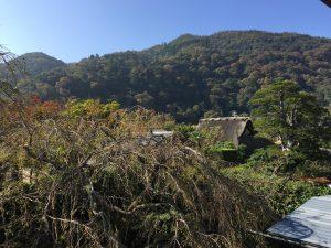 さがのあかり手作り体験会場から見える嵐山